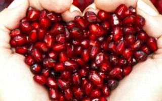 Препараты для поддержания сердца и сердечной мышцы