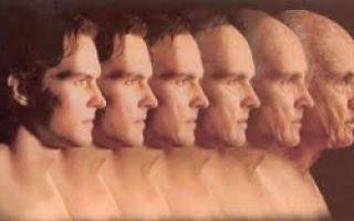 Максимальный пульс у человека
