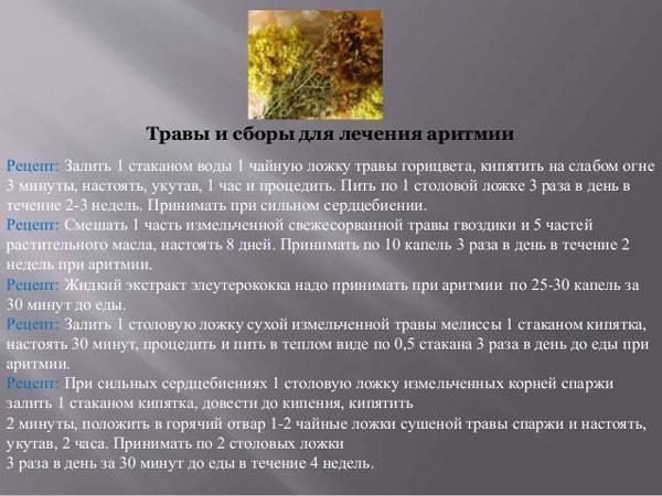 Травы и сборы для лечения аритмии