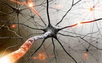 неврологические проявления последствие нарушения нормального кровоснабжения мозга