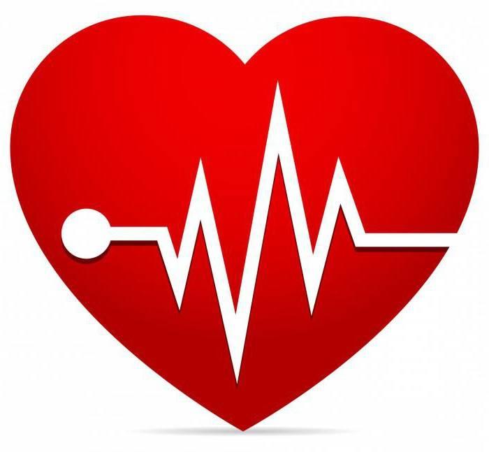 какие клапаны в сердце человека