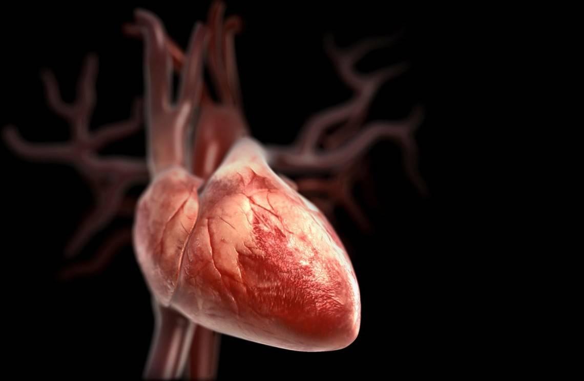 59c8f618dc2d859c8f618dc31f - Bradycardia of the heart - symptoms and treatment with folk remedies