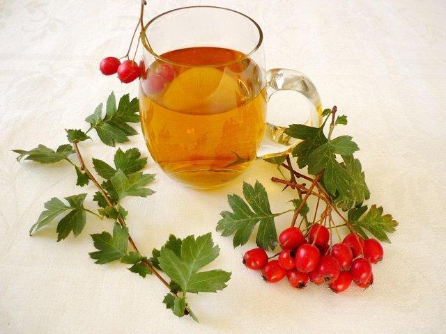 Лечение нервных расстройств с помощью чая из боярышника