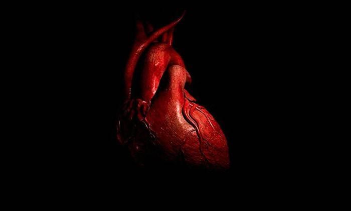замирание сердца причины