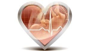 Сердцебиение плода по неделям нормы у девочек