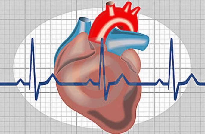 Радиочастотная абляция сердца ее последствия особенности реабилитации