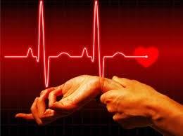 Частота пульса и зависимость от возраста