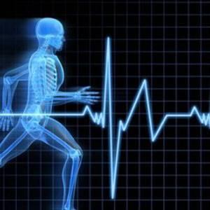 Сколько ударов в минуту должен быть пульс у здорового человека