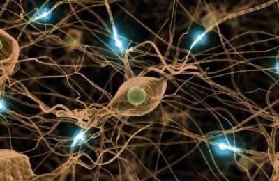 Нейропротекторная терапия
