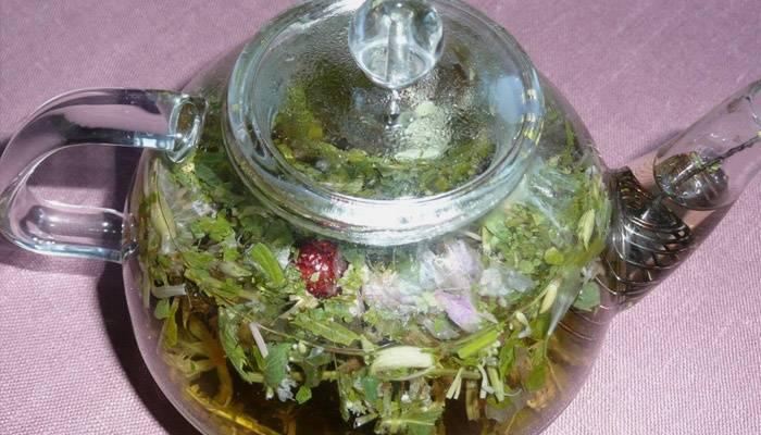 Травяной отвар от тахикардии