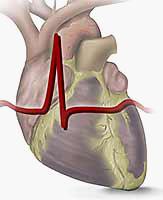 Сердечной недостаточности 2 фк